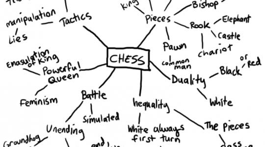 spider_diagram_chess
